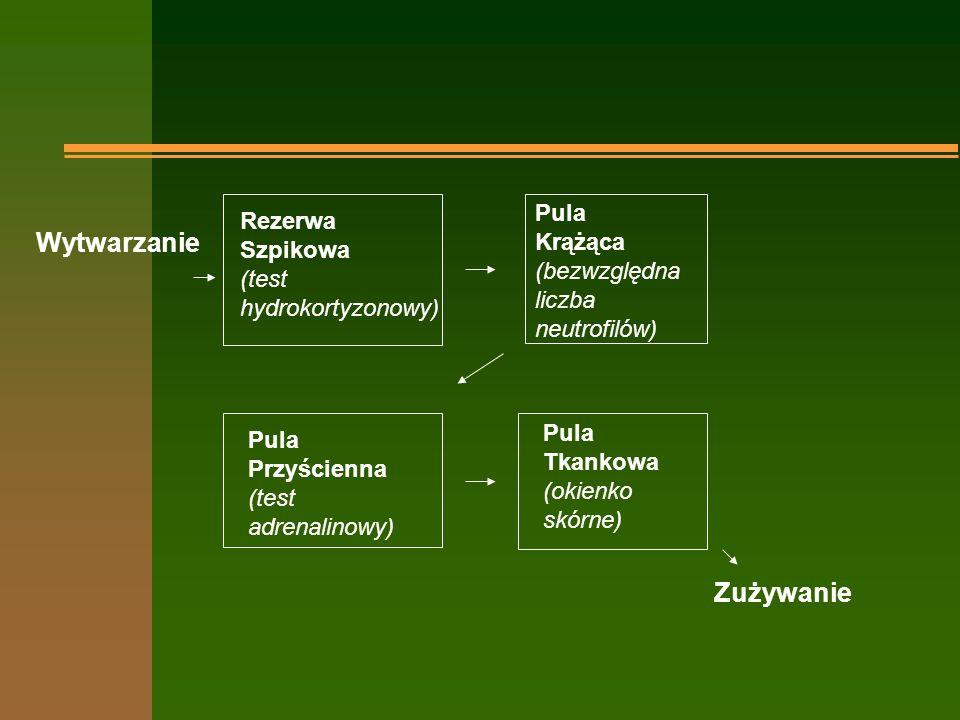 Relacje pomiędzy pulami dojrzałych neutrofili n bezpośrednio po powstaniu dojrzały neutrofil spędza około 50 godzin w szpiku tworząc rezerwę szpikową stanowiącą 1/4 całej liczby tych komórek; n następnie spędza między 8 a 16 godzin we krwi, połowę tego czasu we puli krążącej, połowę w puli przyściennej (łącznie pule te stanowią kolejne 1/4); n resztę swojego życia (około 3-5 dni neutrofil spędza w tkankach) i tam ginie - nie wraca już do krążenia.