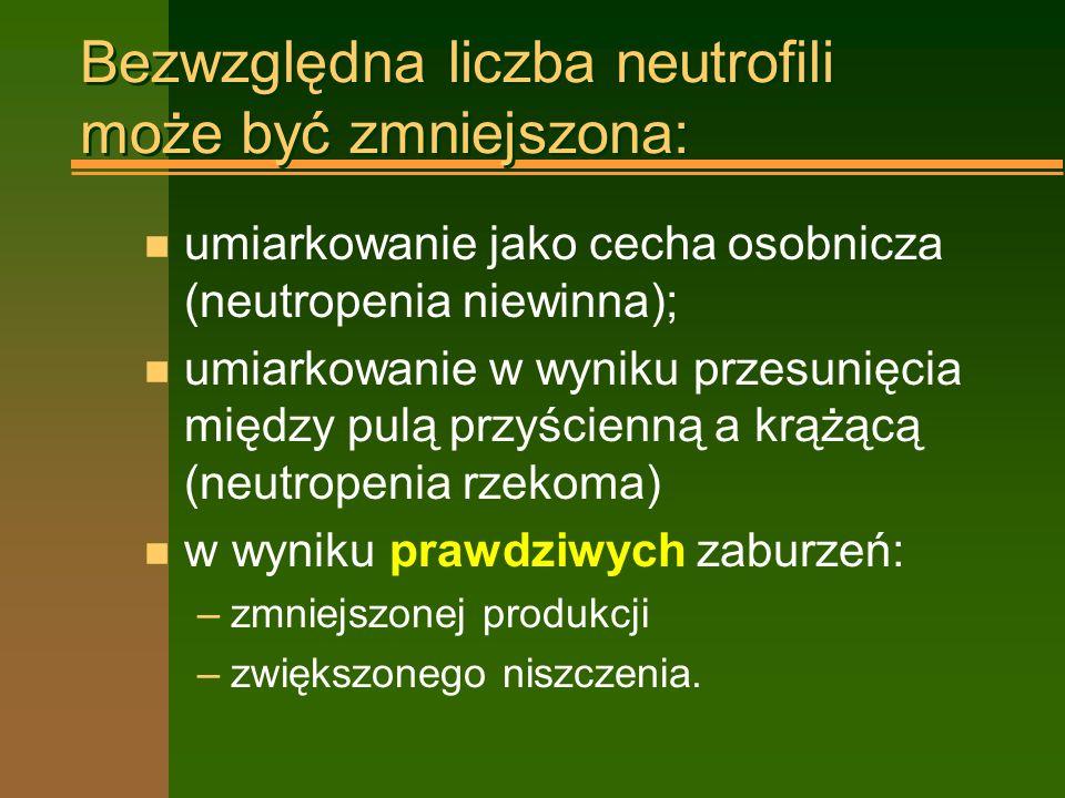 Bezwzględna liczba neutrofili może być zmniejszona: n umiarkowanie jako cecha osobnicza (neutropenia niewinna); n umiarkowanie w wyniku przesunięcia między pulą przyścienną a krążącą (neutropenia rzekoma) n w wyniku prawdziwych zaburzeń: –zmniejszonej produkcji –zwiększonego niszczenia.