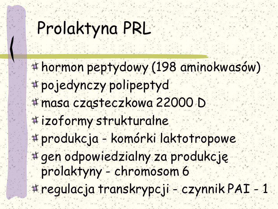 Prolaktyna PRL hormon peptydowy (198 aminokwasów) pojedynczy polipeptyd masa cząsteczkowa 22000 D izoformy strukturalne produkcja - komórki laktotropowe gen odpowiedzialny za produkcję prolaktyny - chromosom 6 regulacja transkrypcji - czynnik PAI - 1
