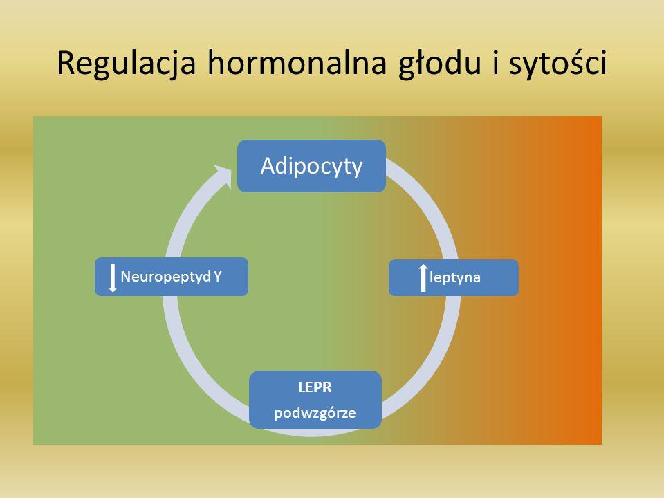 Regulacja hormonalna głodu i sytości Adipocyty Neuropeptyd Y LEPR podwzgórze leptyna