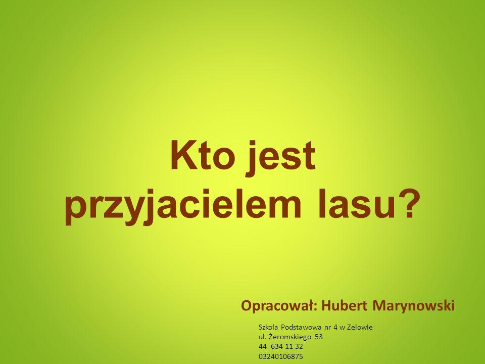 Kto jest przyjacielem lasu. Opracował: Hubert Marynowski Szkoła Podstawowa nr 4 w Zelowie ul.