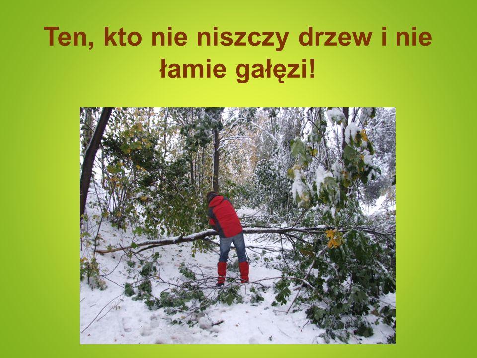 Ten, kto nie niszczy drzew i nie łamie gałęzi!