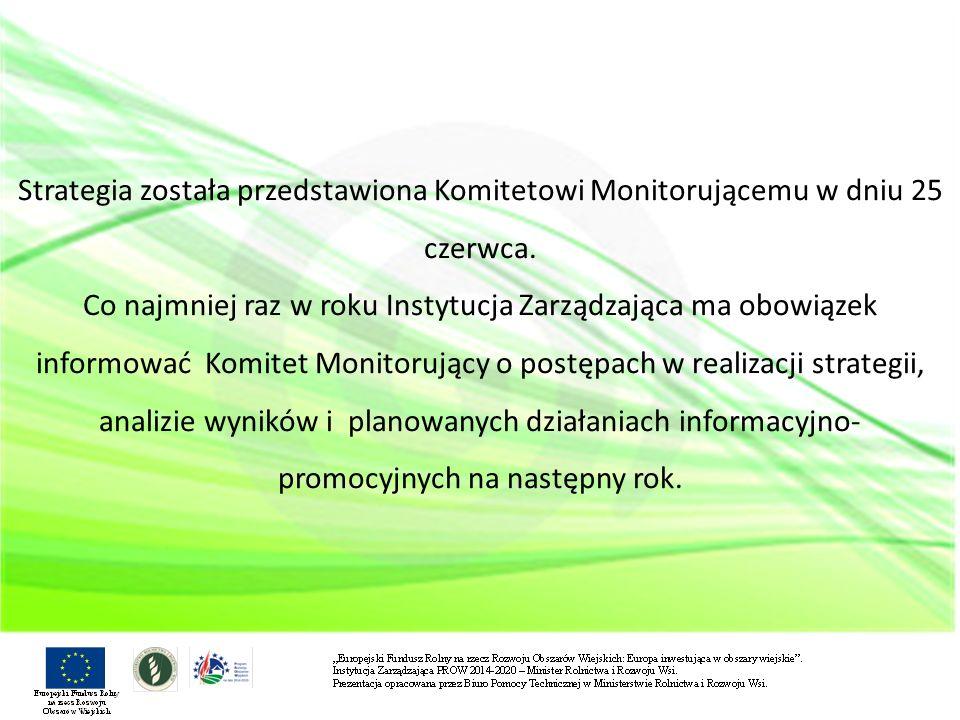 Przyjmuje się prowadzenie działań informacyjno-promocyjnych na dwóch poziomach: - horyzontalnym/ogólnym, prowadzonym przez IZ, - szczegółowym, prowadzonym przez podmioty zaangażowane w realizację Strategii.
