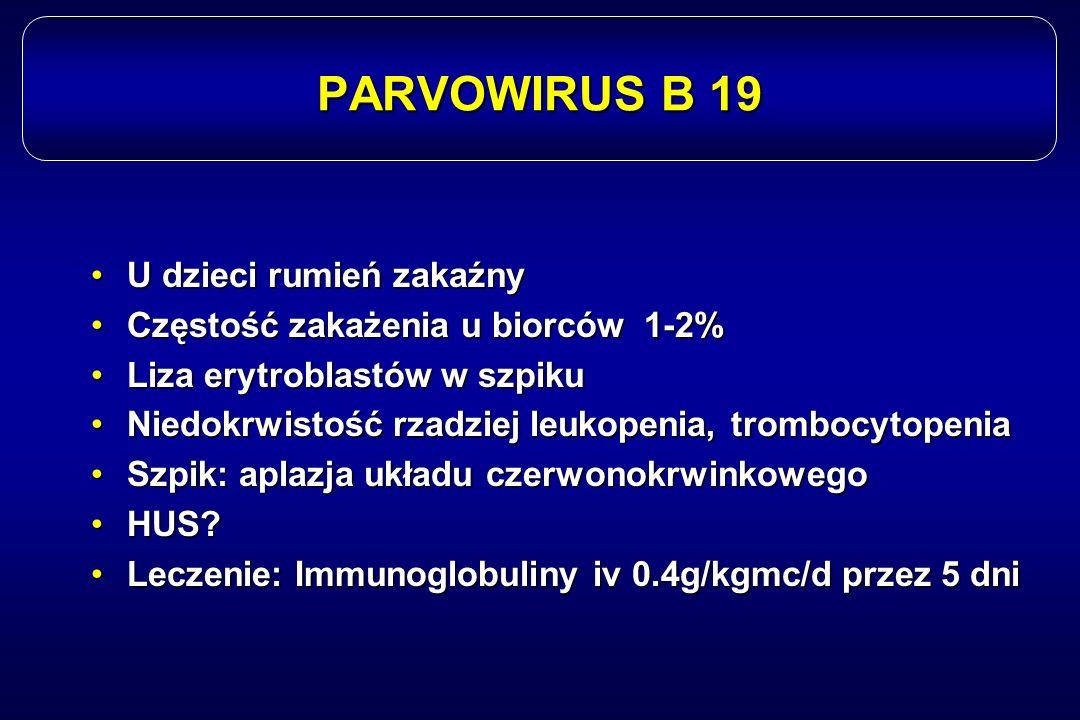 PARVOWIRUS B 19 U dzieci rumień zakaźnyU dzieci rumień zakaźny Częstość zakażenia u biorców 1-2%Częstość zakażenia u biorców 1-2% Liza erytroblastów w