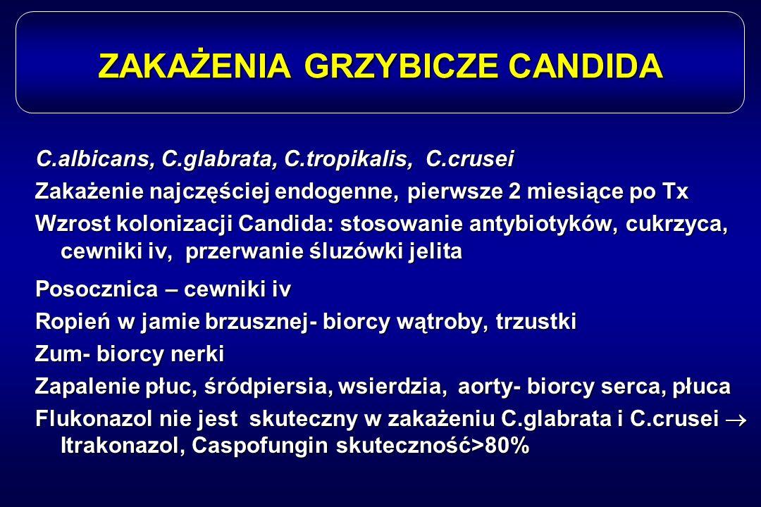 ZAKAŻENIA GRZYBICZE CANDIDA C.albicans, C.glabrata, C.tropikalis, C.crusei Zakażenie najczęściej endogenne, pierwsze 2 miesiące po Tx Wzrost kolonizac