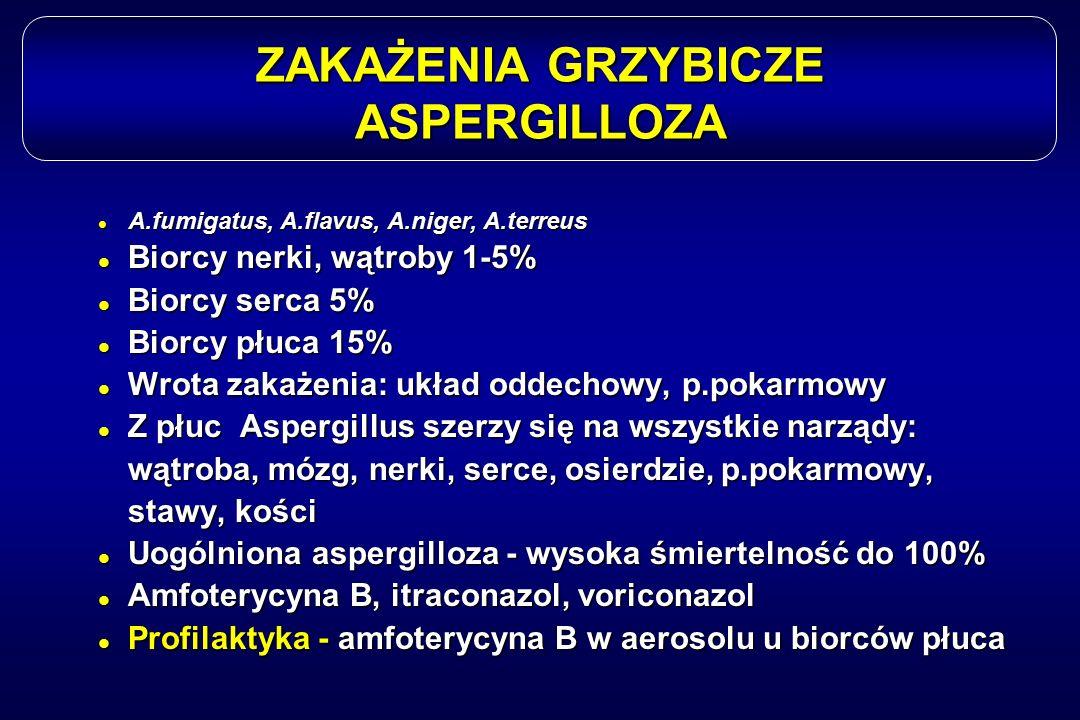 ZAKAŻENIA GRZYBICZE ASPERGILLOZA l A.fumigatus, A.flavus, A.niger, A.terreus l Biorcy nerki, wątroby 1-5% l Biorcy serca 5% l Biorcy płuca 15% l Wrota