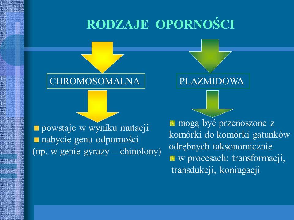PODZIAŁ ANTYBIOTYKÓW W OPARCIU O SPEKTRUM PRZECIWBAKTERYJNE Bakterie Gram (+)Penicylina G, penicylina fenoksymetylowa, glikopeptydy, linkozamidy, makr