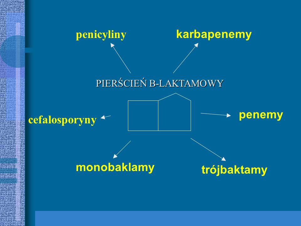 Synteza enzymu degradującego np. B-laktamaza lub modyfikującego np. Acetylotransferaza Modyfikacja miejsca docelowego działania antybiotyku, np. białk