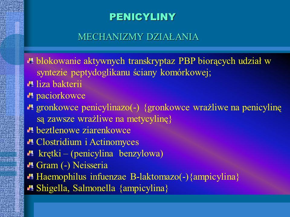 Penicyliny półsyntetyczne Penicyliny naturalne penicylina benzylowa penicylina fenoksymetylowa odporne na penicylinazę gronkowcową metycylina Kloksacy