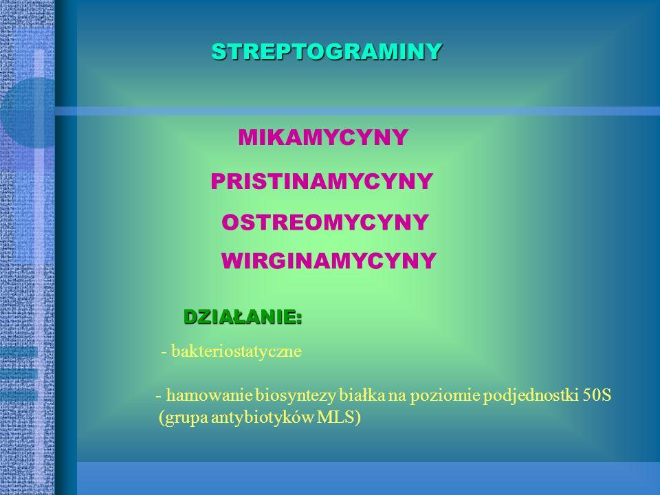 SPEKTRUM - STREPTOCOCCUS z wyjątkiem Enterococcus - STAPHYLOCOCCUS - - BAKTERIE BEZTLENOWE (wysoka aktywność) * ziarenkowce * pałeczki Gram(-) * lasec