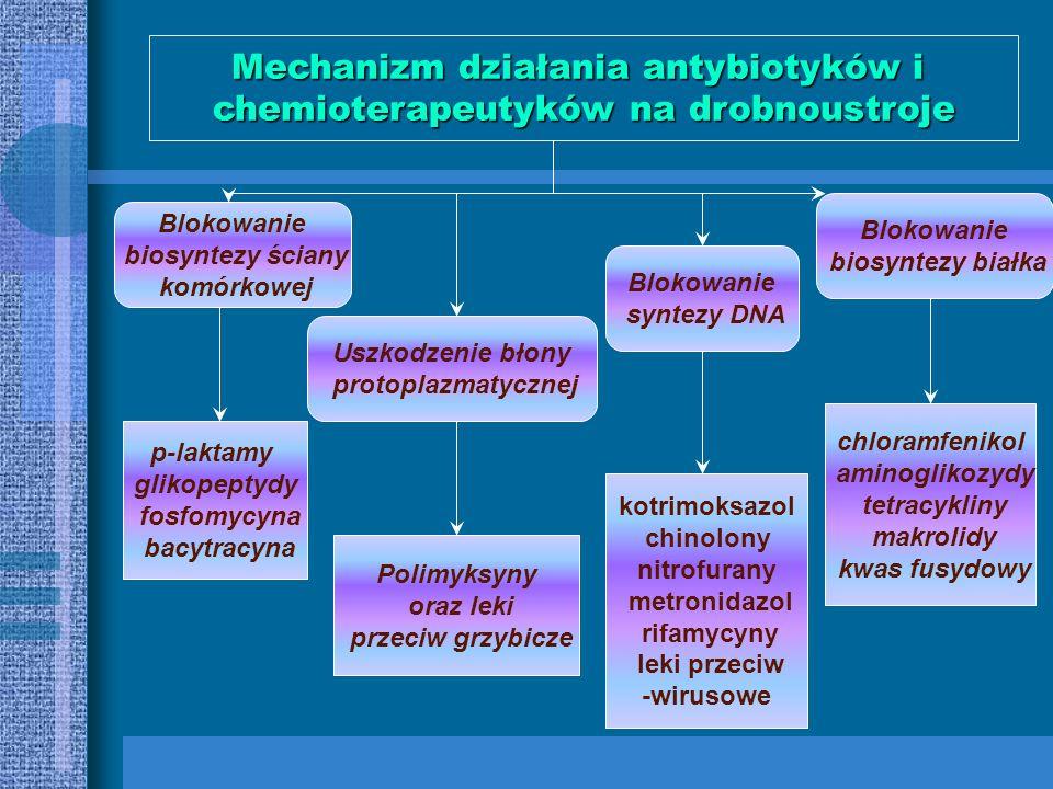 MBC –minimal bacteriocidal activity MIC-minimal inhibitory concentration MAKROLIDYSULFONAMIDYLINKOZAMIDYTETRACYKLINYCHLORAMFENIKOLTRIMETOPRIMKETOLIDY