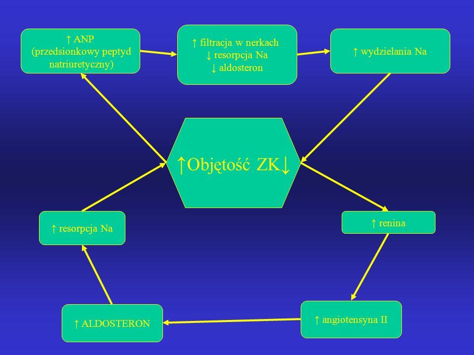 Regulacja równowagi wodnej ↑P osm przestrzeni pozakomórkowej OUN uczucie pragnienia ↑ przyjmowania płynów Normalizacja Posm p. Pozakomórkowej (ZK) Hor