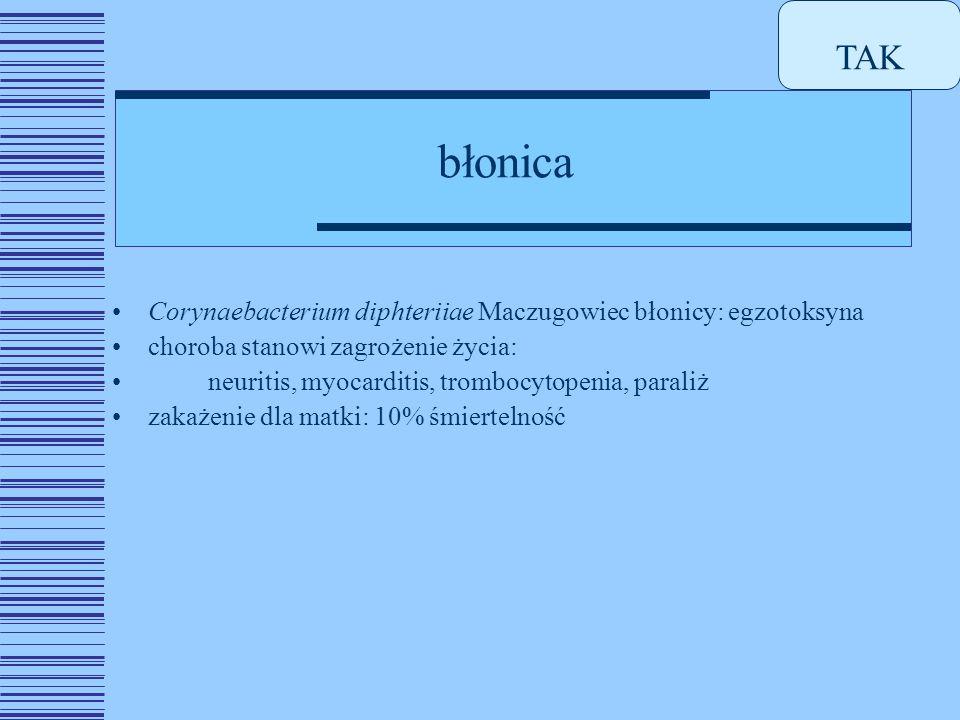 błonica Corynaebacterium diphteriiae Maczugowiec błonicy: egzotoksyna choroba stanowi zagrożenie życia: neuritis, myocarditis, trombocytopenia, paraliż zakażenie dla matki: 10% śmiertelność TAK