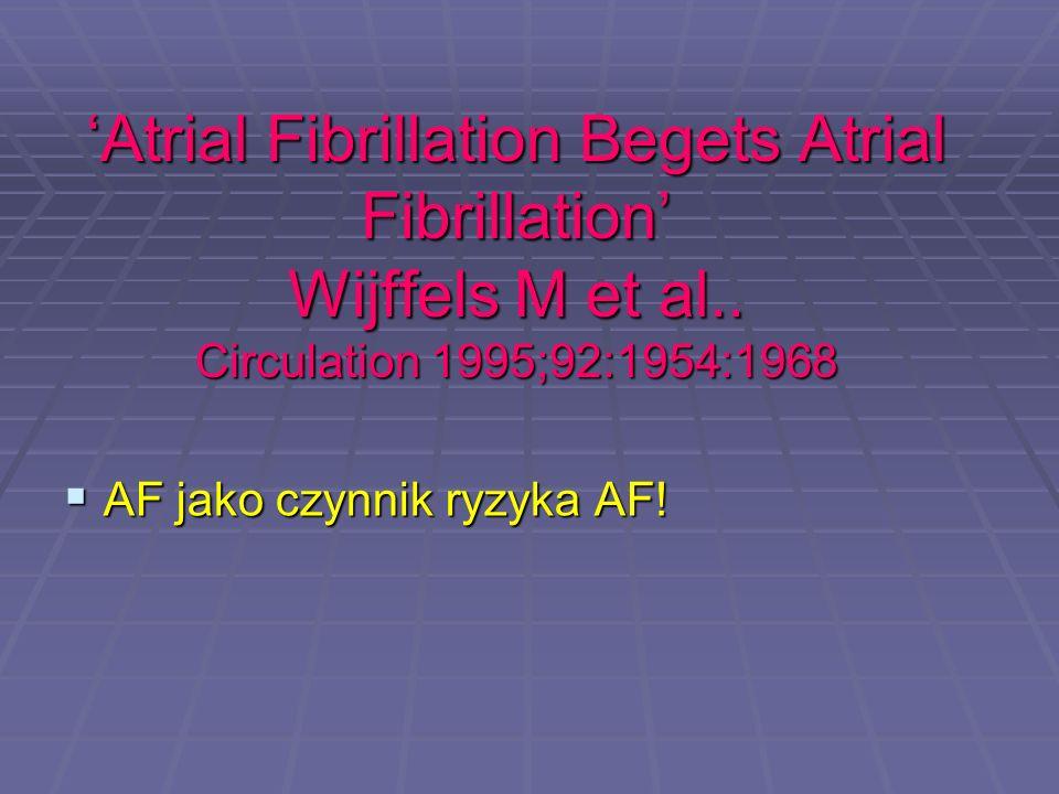 'Atrial Fibrillation Begets Atrial Fibrillation' Wijffels M et al.. Circulation 1995;92:1954:1968  AF jako czynnik ryzyka AF!