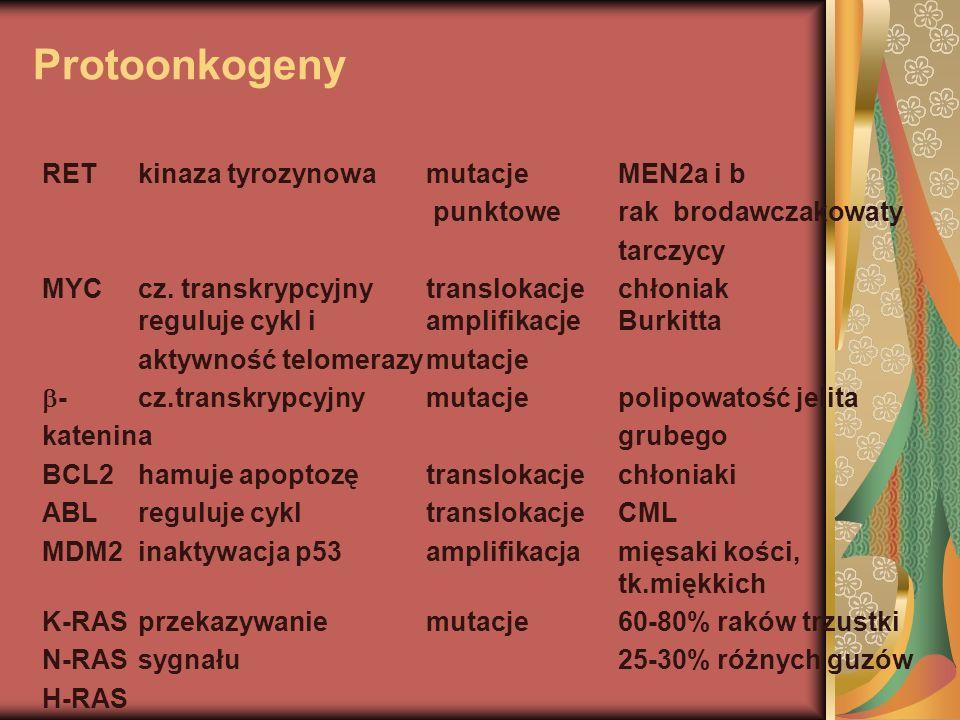 Protoonkogeny RETkinaza tyrozynowamutacjeMEN2a i b punktowe rak brodawczakowaty tarczycy MYCcz. transkrypcyjnytranslokacjechłoniak reguluje cykl iampl