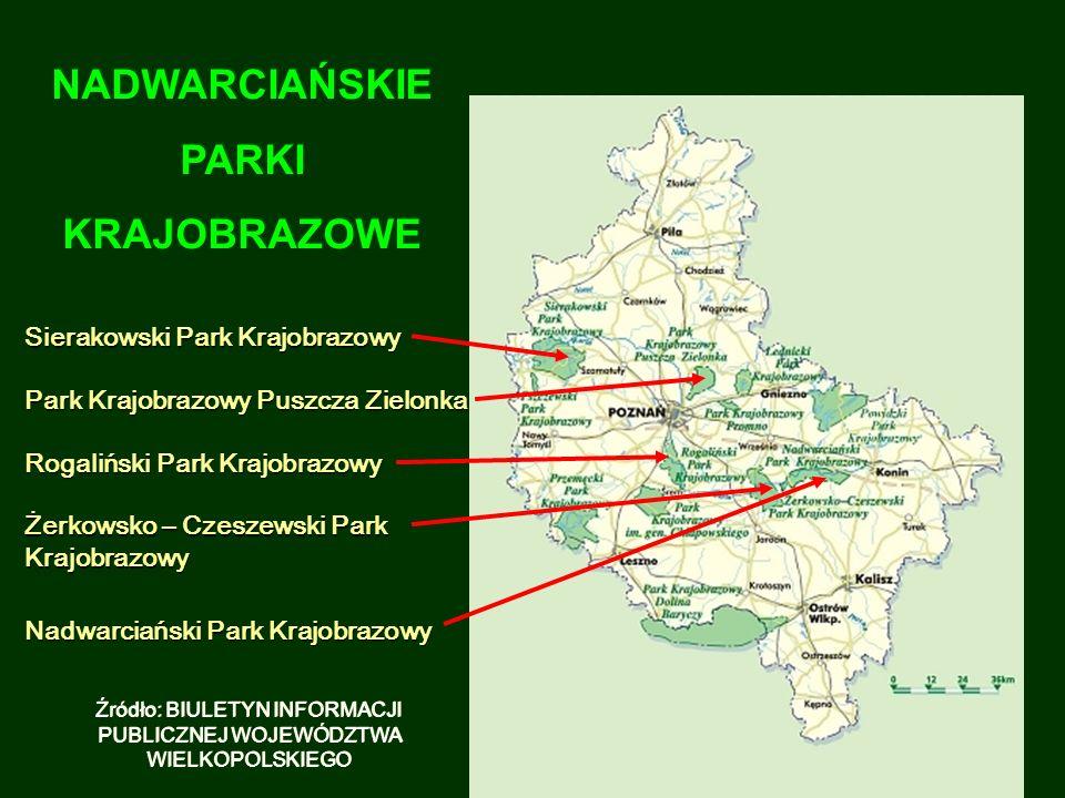Źródło: BIULETYN INFORMACJI PUBLICZNEJ WOJEWÓDZTWA WIELKOPOLSKIEGO NADWARCIAŃSKIE PARKI KRAJOBRAZOWE NADWARCIAŃSKIE PARKI KRAJOBRAZOWE Nadwarciański Park Krajobrazowy Żerkowsko – Czeszewski Park Krajobrazowy Rogaliński Park Krajobrazowy Sierakowski Park Krajobrazowy Park Krajobrazowy Puszcza Zielonka