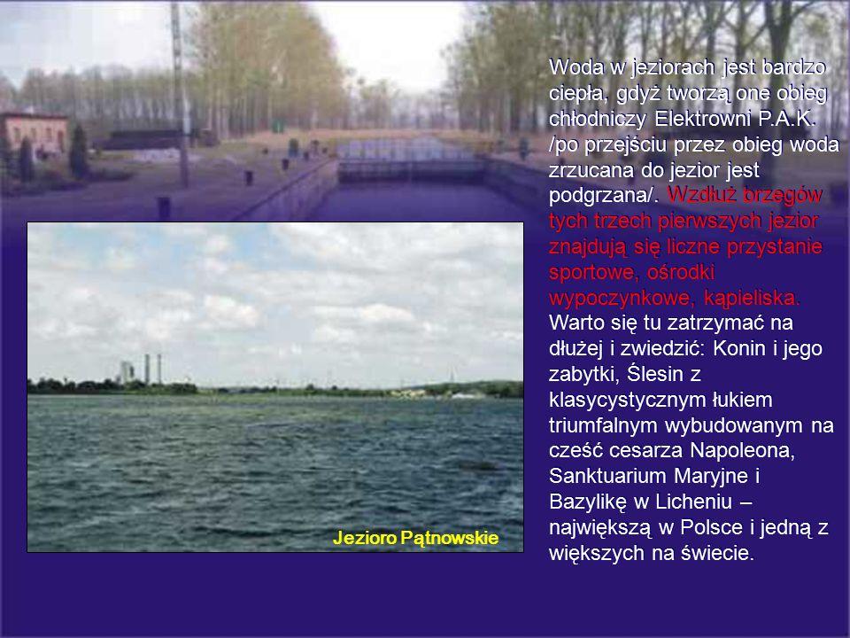 Woda w jeziorach jest bardzo ciepła, gdyż tworzą one obieg chłodniczy Elektrowni P.A.K. /po przejściu przez obieg woda zrzucana do jezior jest podgrza