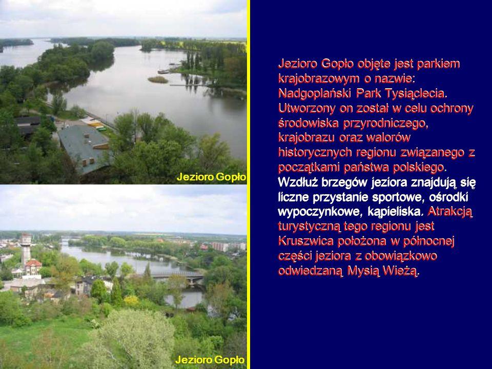 Jezioro Gopło objęte jest parkiem krajobrazowym o nazwie: Nadgoplański Park Tysiąclecia. Utworzony on został w celu ochrony środowiska przyrodniczego,