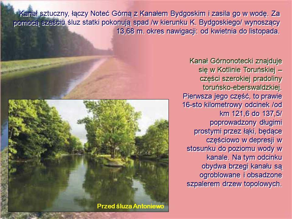 Przed śluza Antoniewo Kanał Górnonotecki znajduje się w Kotlinie Toruńskiej – części szerokiej pradoliny toruńsko-eberswaldzkiej. Pierwsza jego część,