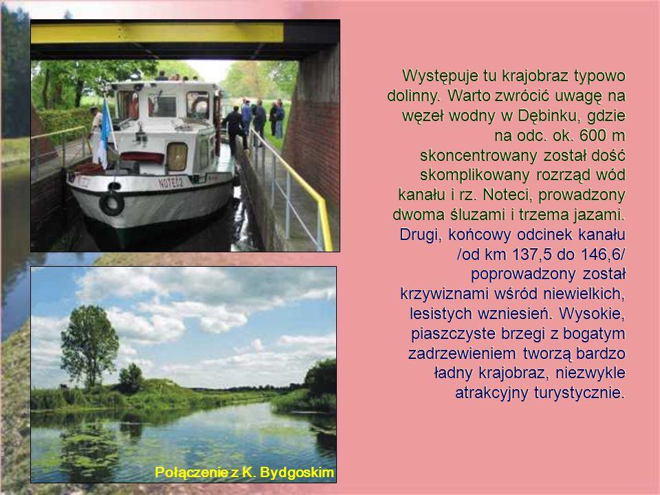 Występuje tu krajobraz typowo dolinny. Warto zwrócić uwagę na węzeł wodny w Dębinku, gdzie na odc.