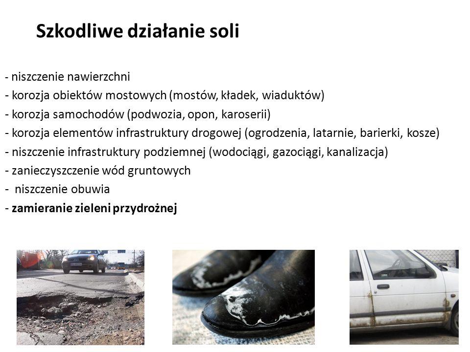 Szkodliwe działanie soli - niszczenie nawierzchni - korozja obiektów mostowych (mostów, kładek, wiaduktów) - korozja samochodów (podwozia, opon, karos
