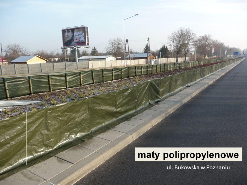 ul. Bukowska w Poznaniu maty polipropylenowe