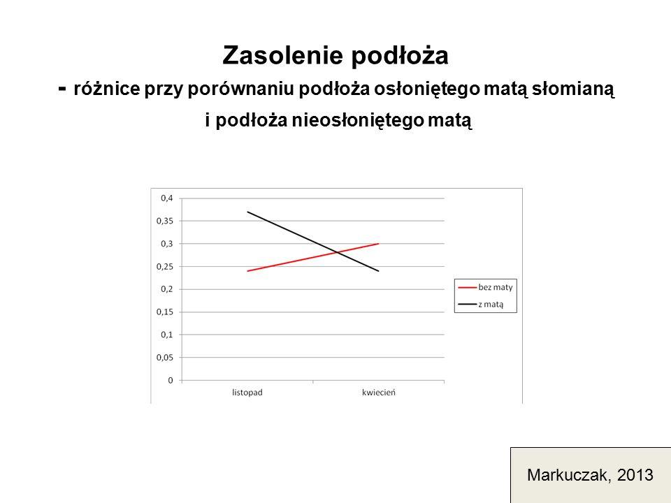 Zasolenie podłoża - różnice przy porównaniu podłoża osłoniętego matą słomianą i podłoża nieosłoniętego matą Markuczak, 2013