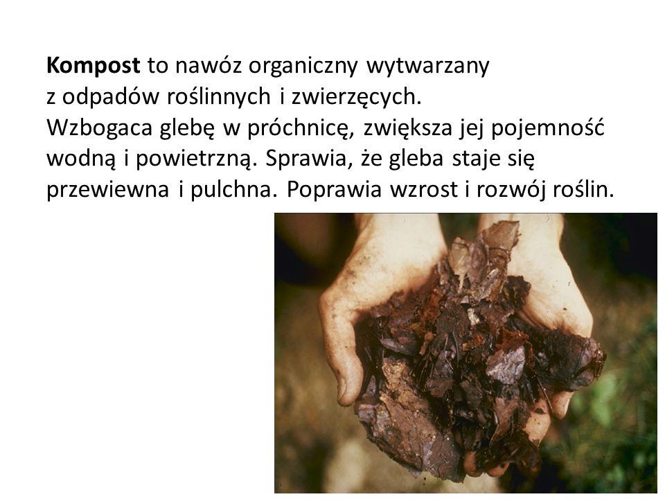 Biografia http://www.zielonyogrodek.pl/kompost-co- jak-i-gdzie-kompostowac http://www.zielonyogrodek.pl/kompost-co- jak-i-gdzie-kompostowac http://pl.wikipedia.org/wiki/Kompostowiec_r %C3%B3%C5%BCowy http://pl.wikipedia.org/wiki/Kompostowiec_r %C3%B3%C5%BCowy http://www.kompostowniki.pl/kompostowani e.php http://www.kompostowniki.pl/kompostowani e.php http://pl.wikipedia.org/wiki/Kompostownik