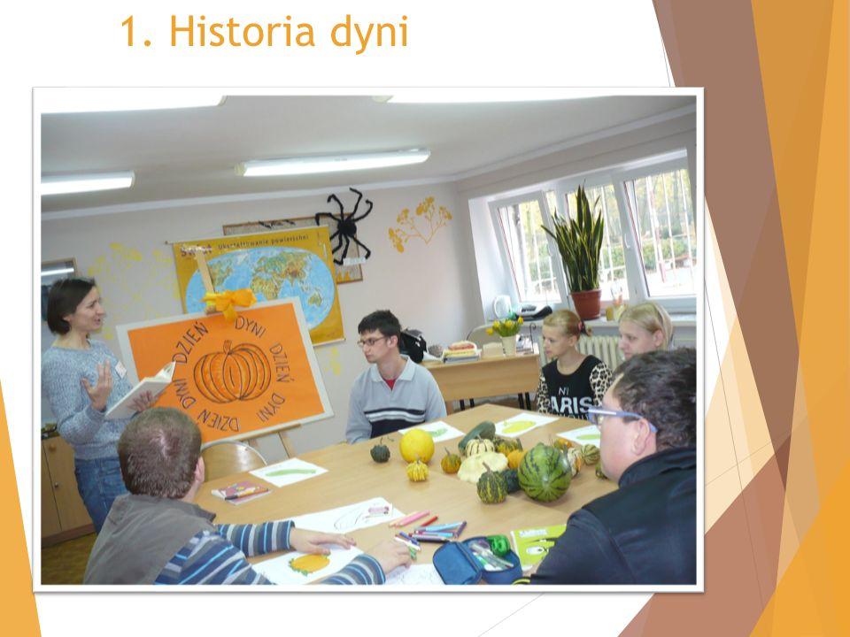 1. Historia dyni