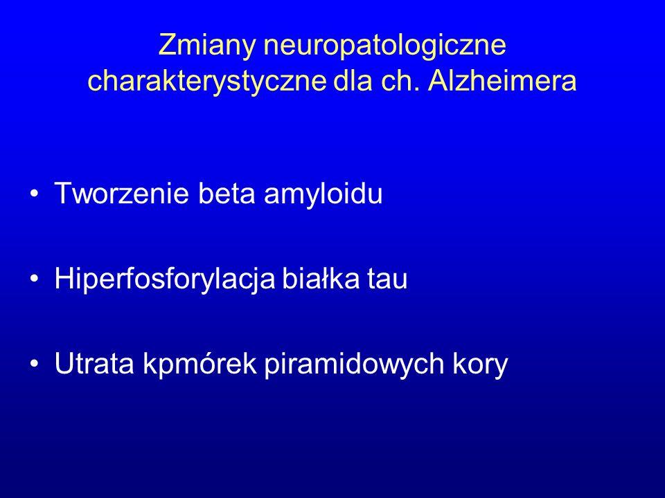 Zmiany neuropatologiczne charakterystyczne dla ch. Alzheimera Tworzenie beta amyloidu Hiperfosforylacja białka tau Utrata kpmórek piramidowych kory