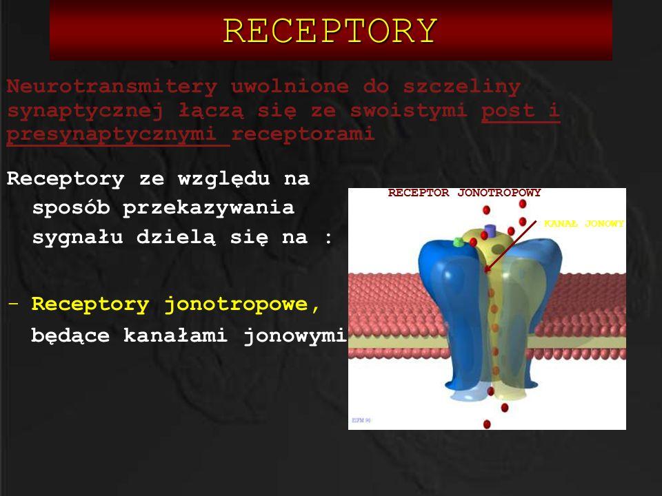 RECEPTORY Receptory ze względu na sposób przekazywania sygnału dzielą się na : -Receptory jonotropowe, będące kanałami jonowymi KANAŁ JONOWY RECEPTOR