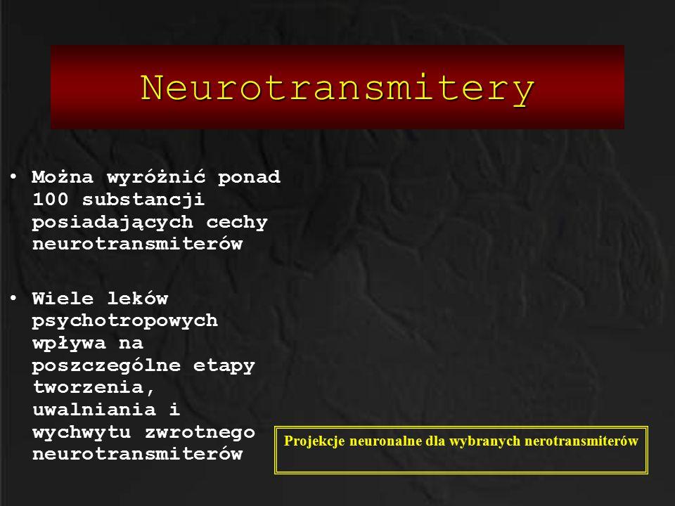Neurotransmitery Można wyróżnić ponad 100 substancji posiadających cechy neurotransmiterów Wiele leków psychotropowych wpływa na poszczególne etapy tw