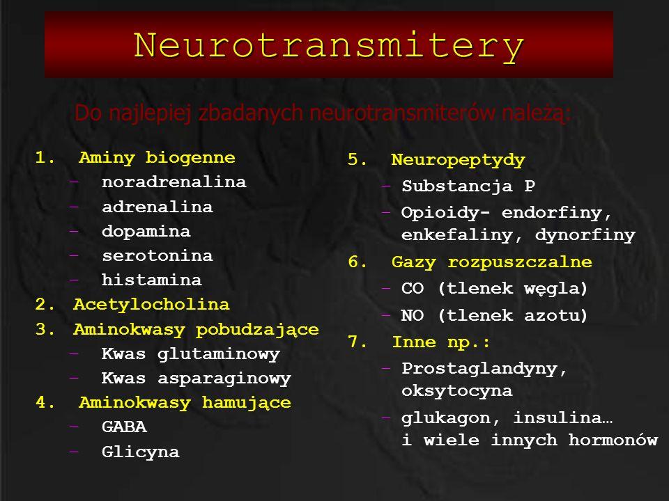 Neurotransmitery 1. Aminy biogenne –noradrenalina –adrenalina –dopamina –serotonina –histamina 2.Acetylocholina 3.Aminokwasy pobudzające –Kwas glutami