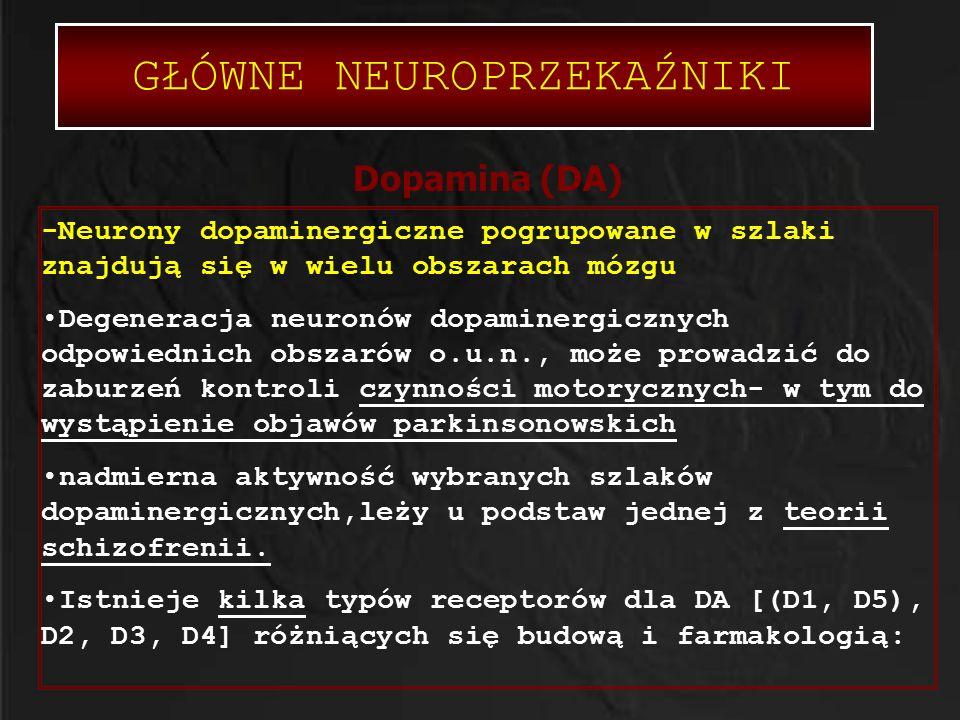 GŁÓWNE NEUROPRZEKAŹNIKI Dopamina (DA) -Neurony dopaminergiczne pogrupowane w szlaki znajdują się w wielu obszarach mózgu Degeneracja neuronów dopamine