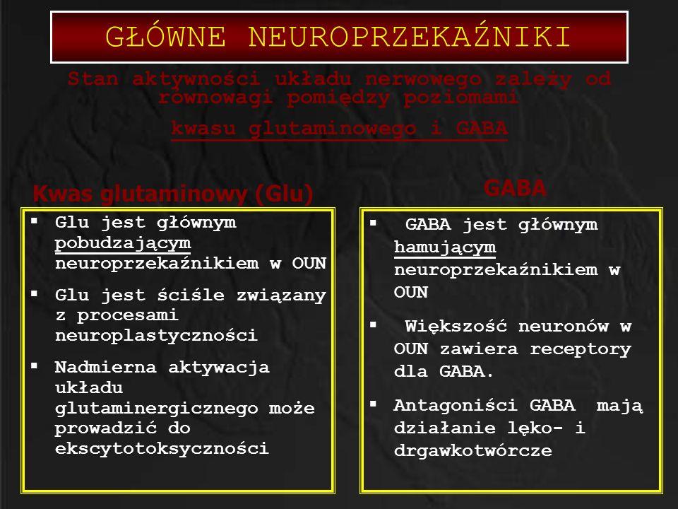  Glu jest głównym pobudzającym neuroprzekaźnikiem w OUN  Glu jest ściśle związany z procesami neuroplastyczności  Nadmierna aktywacja układu glutam