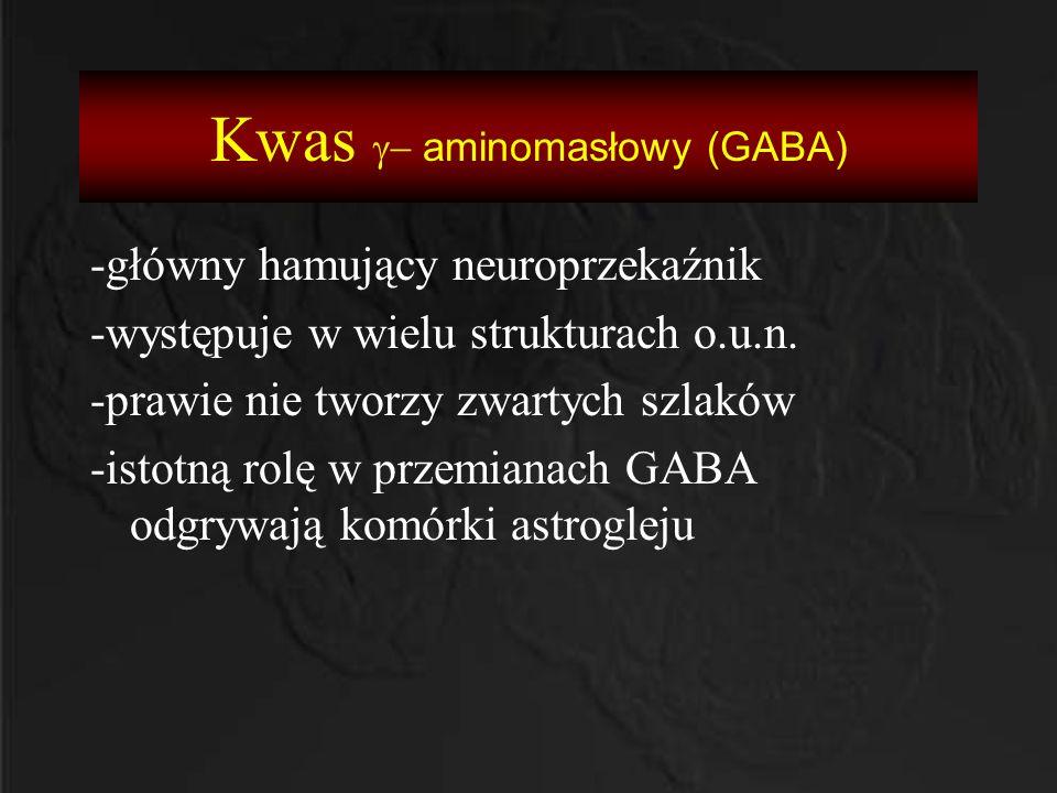 Kwas  aminomasłowy (GABA) -główny hamujący neuroprzekaźnik -występuje w wielu strukturach o.u.n. -prawie nie tworzy zwartych szlaków -istotną rolę