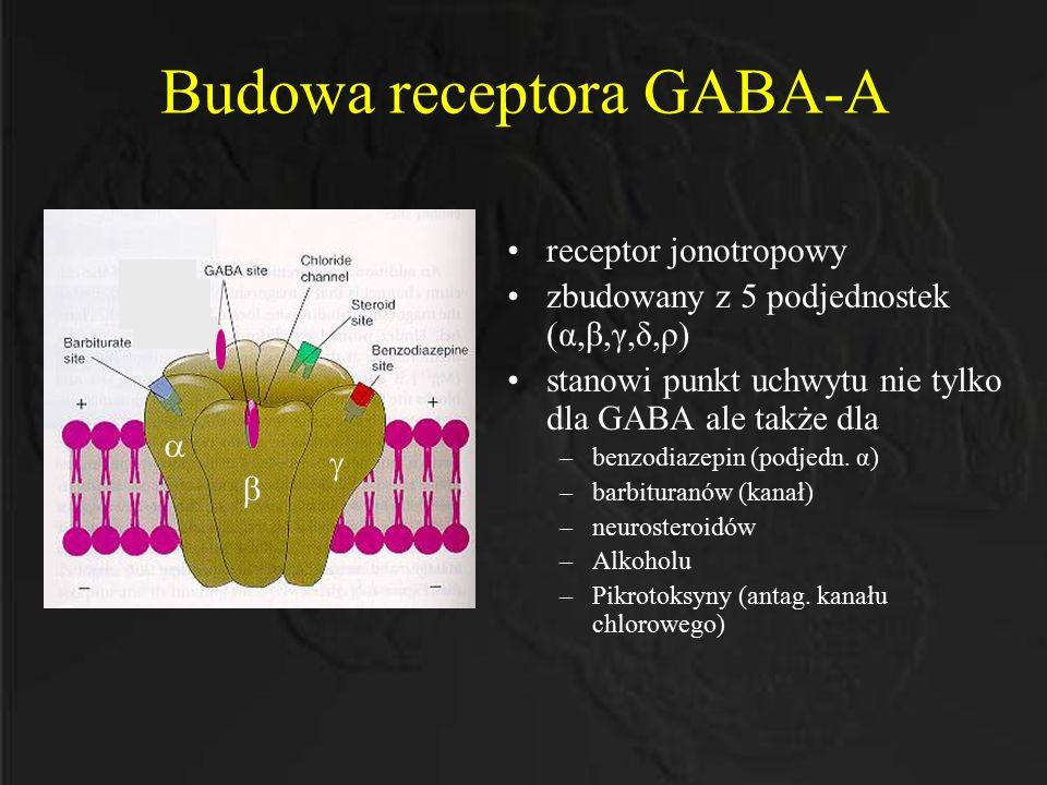 Budowa receptora GABA-A receptor jonotropowy zbudowany z 5 podjednostek (α,β,γ,δ,ρ) stanowi punkt uchwytu nie tylko dla GABA ale także dla –benzodiaze