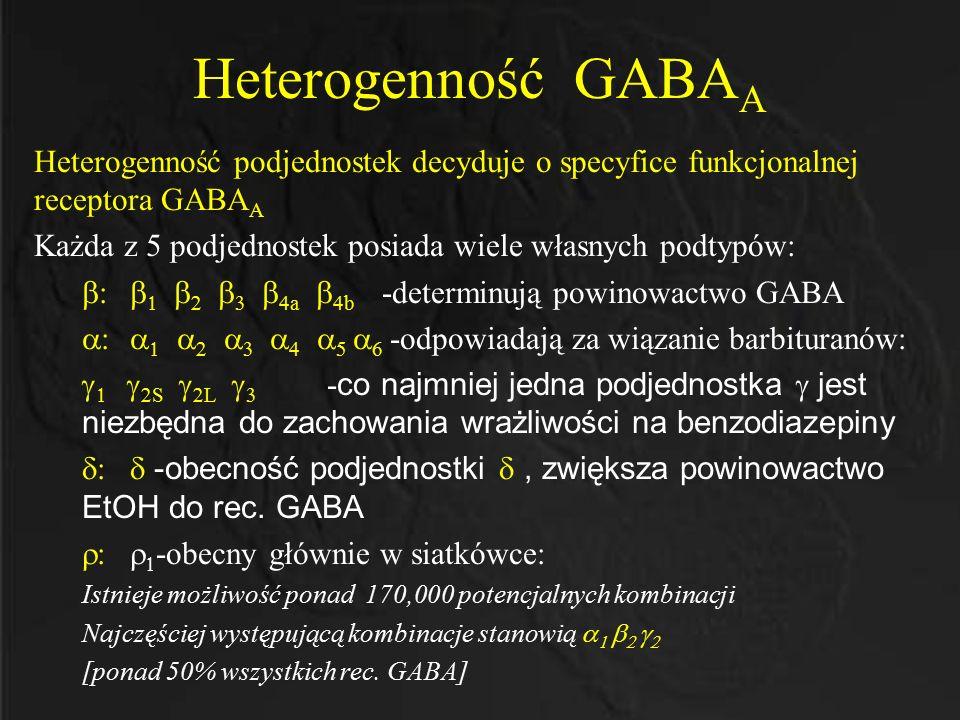 Heterogenność GABA A Heterogenność podjednostek decyduje o specyfice funkcjonalnej receptora GABA A Każda z 5 podjednostek posiada wiele własnych podt