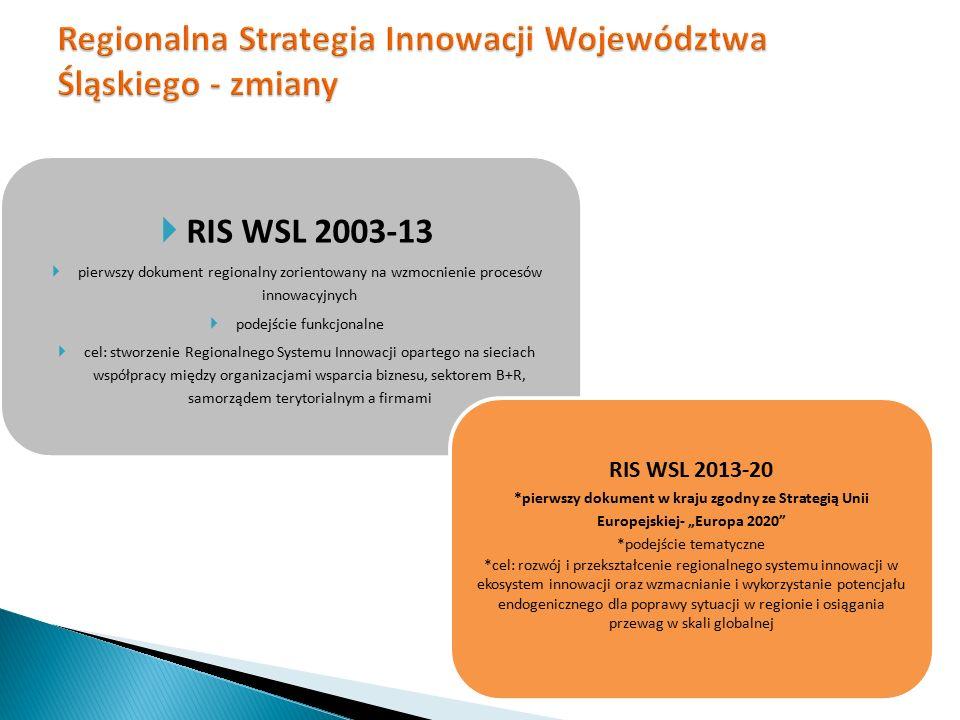  RIS WSL 2003-13  pierwszy dokument regionalny zorientowany na wzmocnienie procesów innowacyjnych  podejście funkcjonalne  cel: stworzenie Regiona
