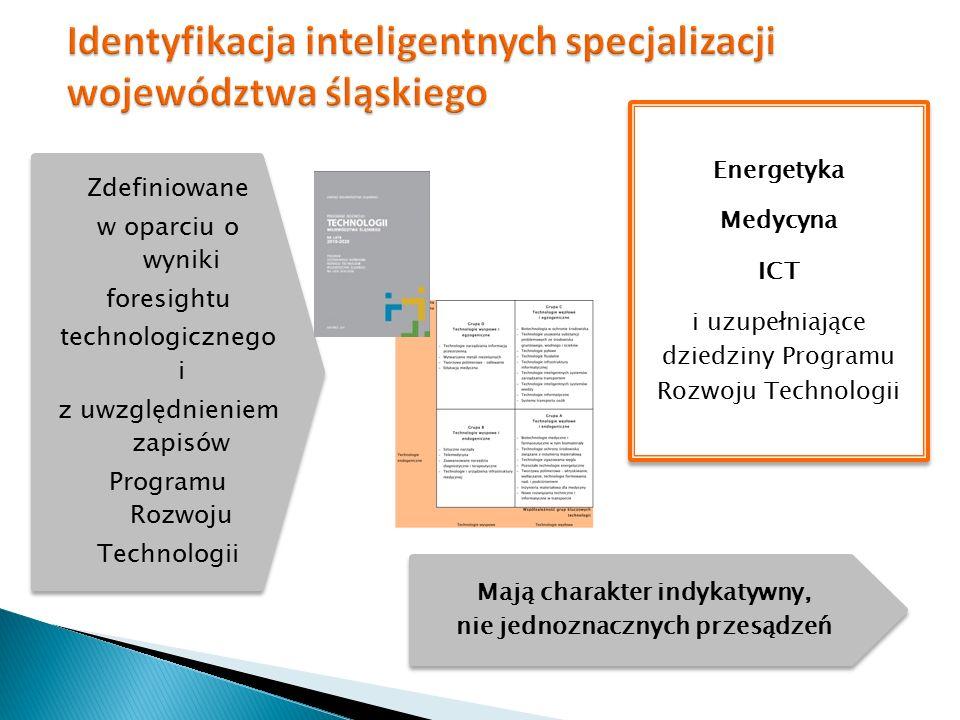 będąca ważnym sektorem gospodarczym regionu i gospodarki narodowej Energetyka stanowiąca jeden z wyróżników województwa śląskiego w kraju Medycyna mające horyzontalne znaczenie dla rozwoju technologicznego, gospodarczego i społecznego ICT