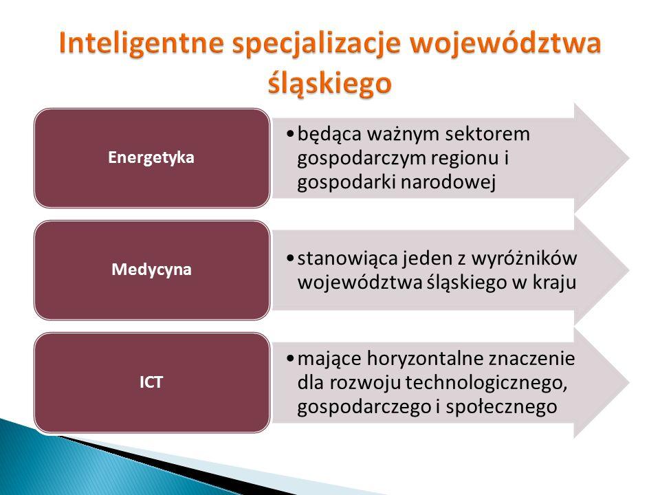 będąca ważnym sektorem gospodarczym regionu i gospodarki narodowej Energetyka stanowiąca jeden z wyróżników województwa śląskiego w kraju Medycyna maj