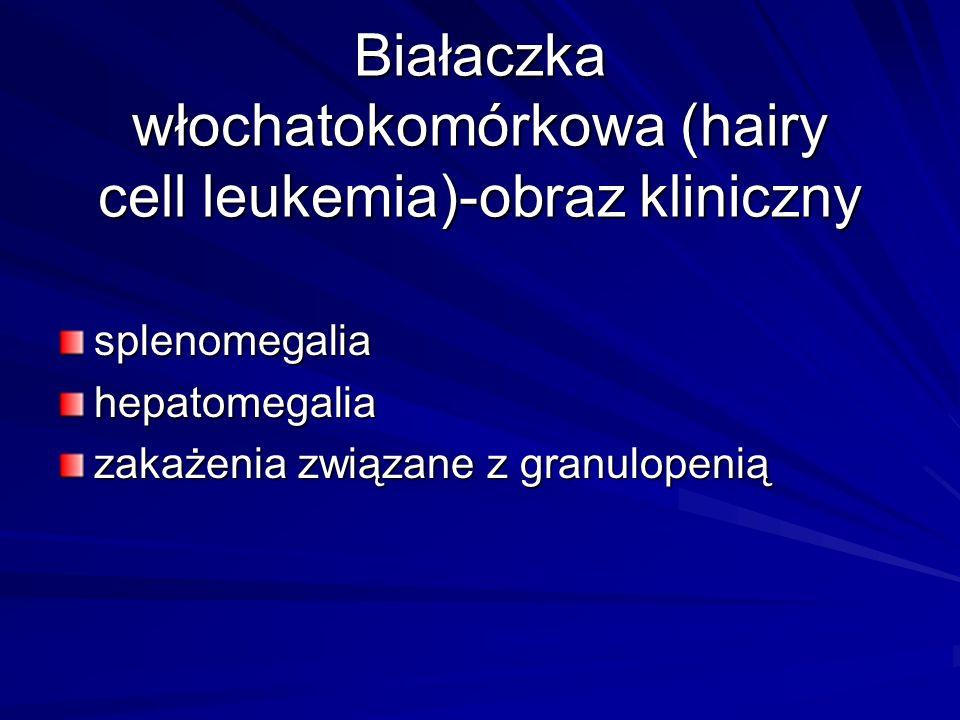Białaczka włochatokomórkowa (hairy cell leukemia)-obraz kliniczny splenomegaliahepatomegalia zakażenia związane z granulopenią