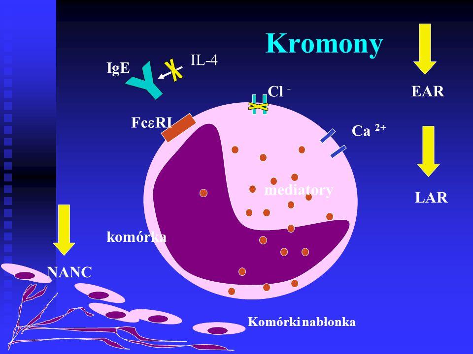 Kromony IgE mediatory komórka Fc  RI Ca 2+ Cl - IL-4 LAR EAR NANC Komórki nabłonka