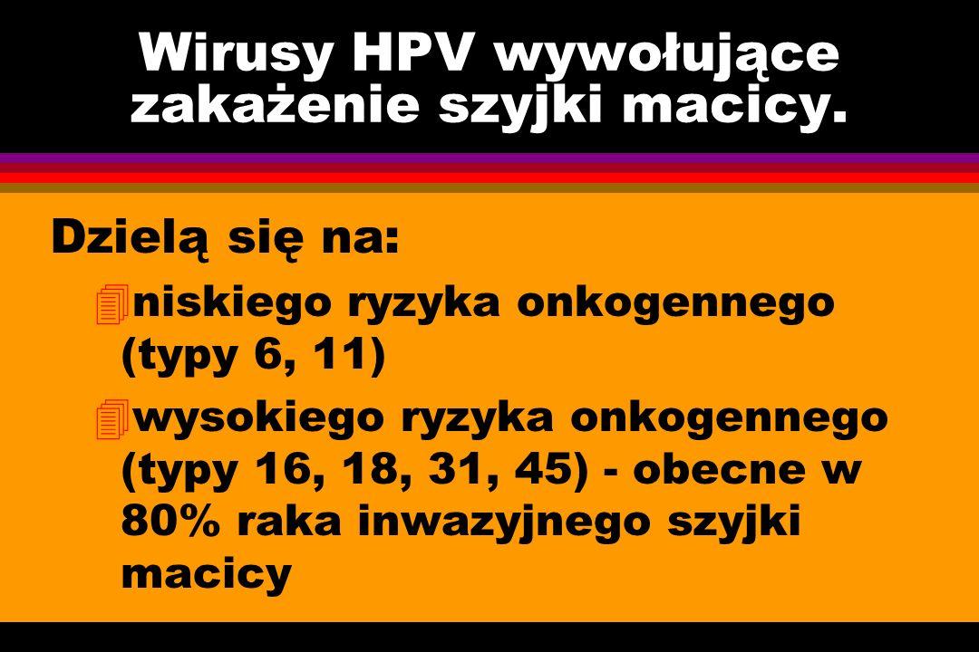 Wirusy HPV wywołujące zakażenie szyjki macicy. Dzielą się na: 4niskiego ryzyka onkogennego (typy 6, 11) 4wysokiego ryzyka onkogennego (typy 16, 18, 31