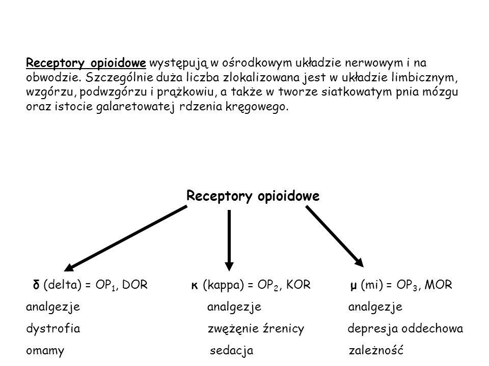 Receptory opioidowe występują w ośrodkowym układzie nerwowym i na obwodzie. Szczególnie duża liczba zlokalizowana jest w układzie limbicznym, wzgórzu,