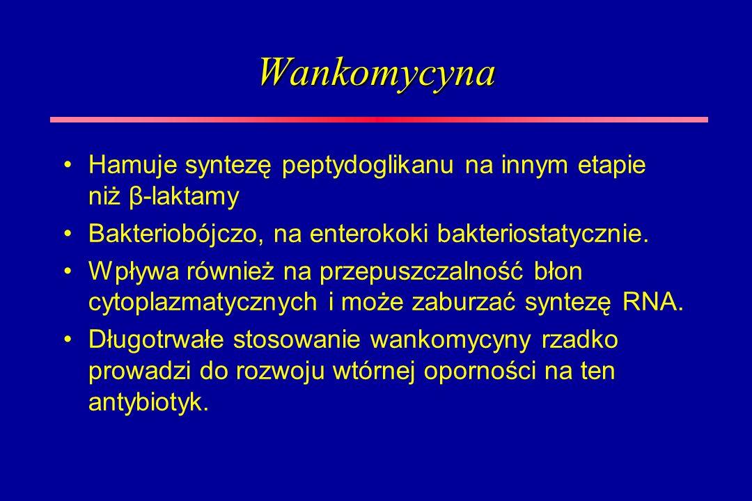 Wankomycyna Hamuje syntezę peptydoglikanu na innym etapie niż β-laktamy Bakteriobójczo, na enterokoki bakteriostatycznie. Wpływa również na przepuszcz