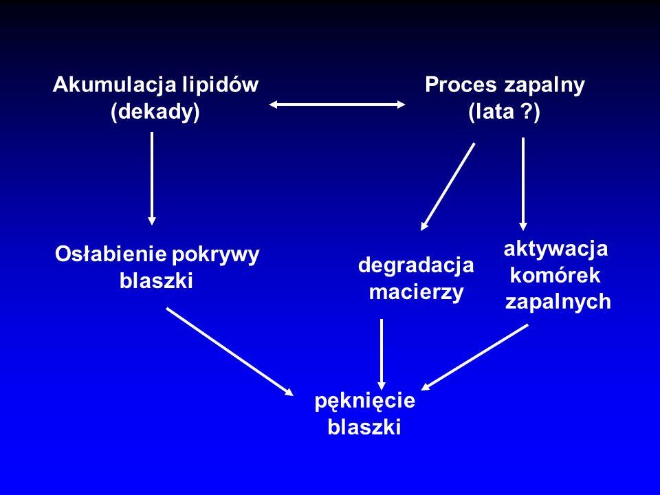 –Limfocyty T –Komórki piankowate (tissue factor + ) –Aktywowane SMC (HLA-DR + ) –SMC czapeczka światło Rdzeń lipidowy Blaszka stabilna media światło R