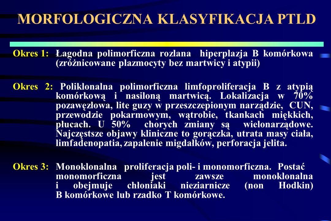MORFOLOGICZNA KLASYFIKACJA PTLD Okres 1:Łagodna polimorficzna rozlana hiperplazja B komórkowa (zróżnicowane plazmocyty bez martwicy i atypii) Okres 2: