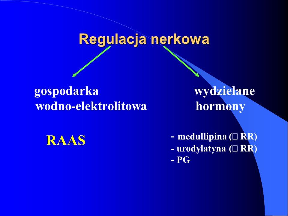Regulacja nerkowa gospodarka wydzielane wodno-elektrolitowa hormony RAAS - medullipina (  RR) - urodylatyna (  RR) - PG