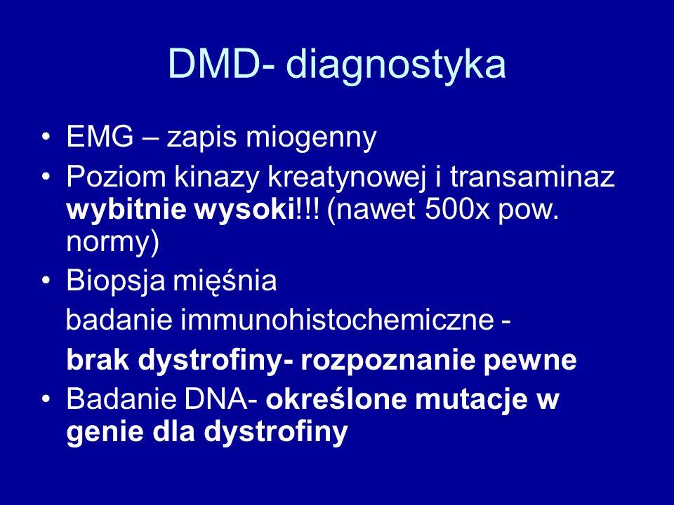 DMD- diagnostyka EMG – zapis miogenny Poziom kinazy kreatynowej i transaminaz wybitnie wysoki!!! (nawet 500x pow. normy) Biopsja mięśnia badanie immun